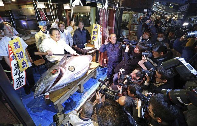 Kiyoshi Kimura, patron de la chaîne de restaurants Sushizanmai, s'est offert le 5 janvier 2016 le premier thon rouge du marché aux poissons de Tsukiji à Tokyo.