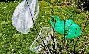 Illustration de sacs plastiques dans des arbustes.