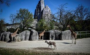 Le restaurant du zoo de Vincennes a été braqué