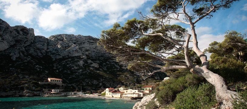 Les calanques de Marseille sont l'un des sites les plus visités en région Paca.