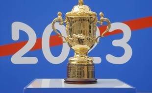 La coupe Webb Ellis, trophée de la Coupe du monde de rugby, à Paris le 8 septembre 2020.