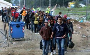 Des migrants traversent la frontière entre la Grèce et la Macédoine près du village de Idomeni, le 14 octobre 2015
