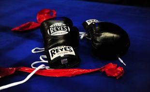 Des gants de boxe (illustration).
