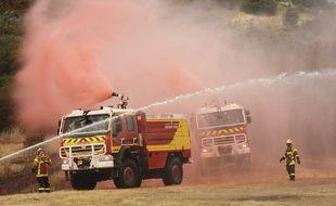 Des pompiers sur un feu de forêt (illustration)