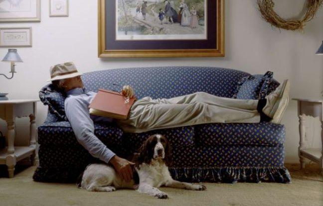 gros chien cherche petit f2 parisien. Black Bedroom Furniture Sets. Home Design Ideas