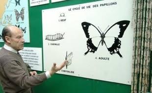 La volière aux 150 papillons, à Haute-Goulaine.