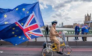 Un militant contre le Brexit manifeste (illustration).