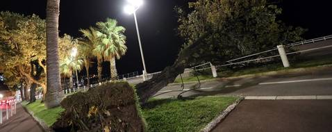 """A tree fell on the """"Promenade des Anglais"""" during the Eleanor storm on the French riviera city of Nice, on January 3, 2018.  Winter storm Eleanor sweeps into France, Belgium and the Netherlands after battering England and Northern Ireland, cutting power to tens of thousands while forcing airports and train services to halt operations."""