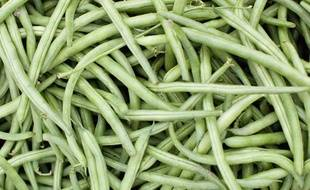 Des haricots verts. (illustration).