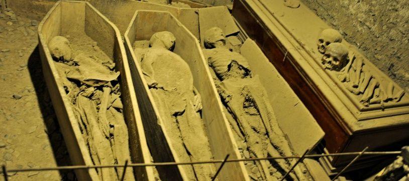 Les momies entreposées dans la crypte de l'église St Michan, à Dublin (Irlande).