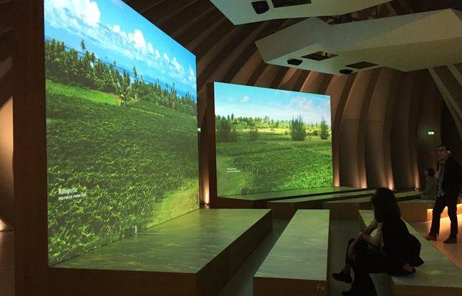Des documentaires sont diffusés sur des écrans géants