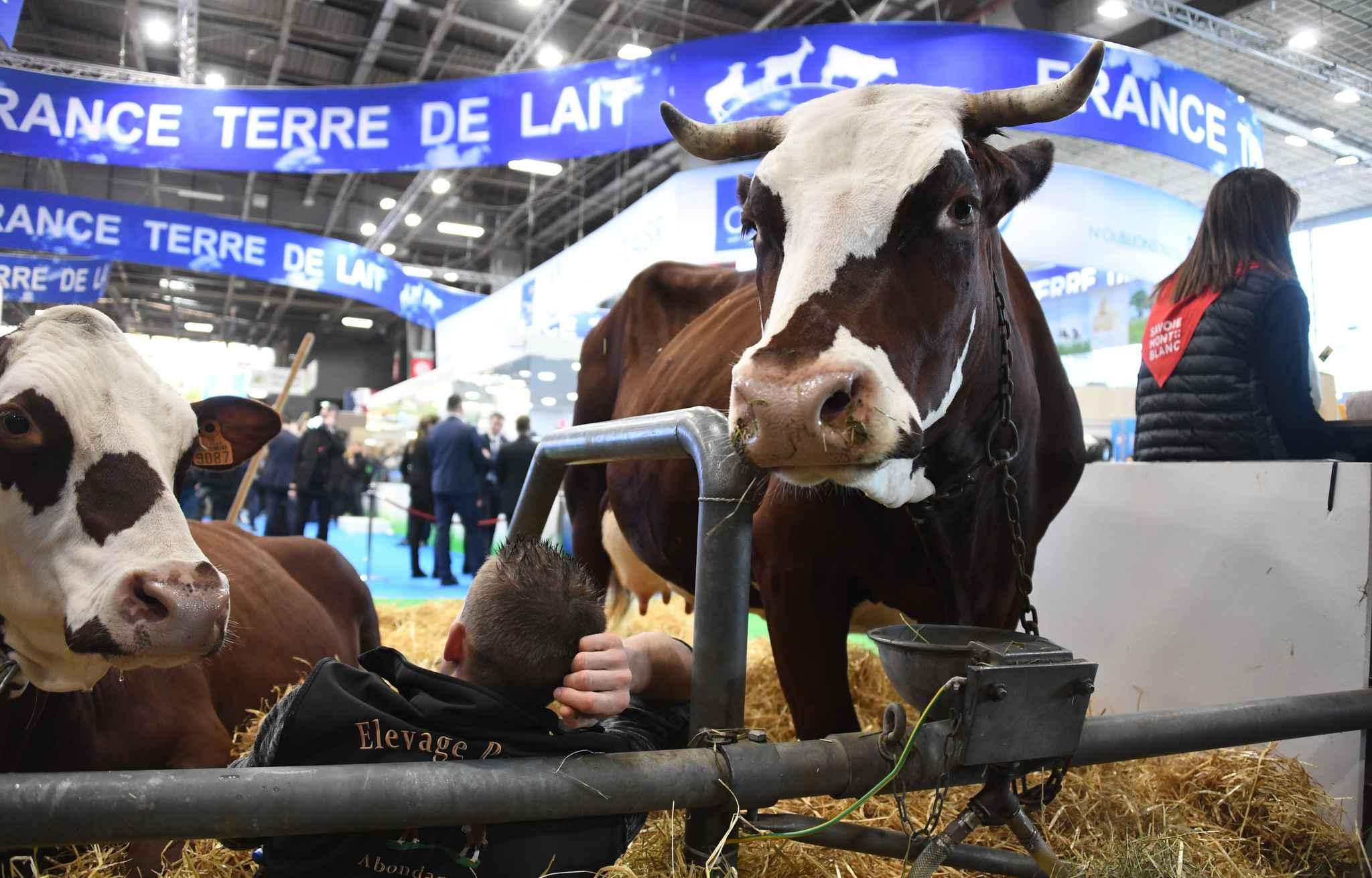 Salon International de l'Agriculture (SIA). Parc des Expositions de la Porte de Versailles, Paris, France, le 23 fevrier 2019.