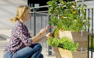 La jardinière connectée et intelligente développée par la start-up Agrove.