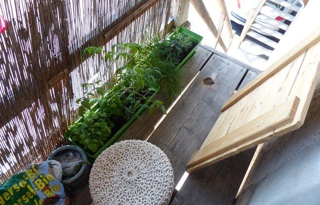 L'expérience permaculture.