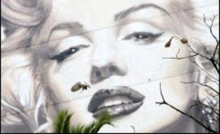 Le carnet d'adresses de Marilyn Monroe a été adjugé aux enchères jeudi pour 31.000 dollars chez Christie's New York, lors d'une vente incluant des centaines de reliques de stars, notamment une célèbre perruque d'Andy Warhol, vendue 10.800 dollars.