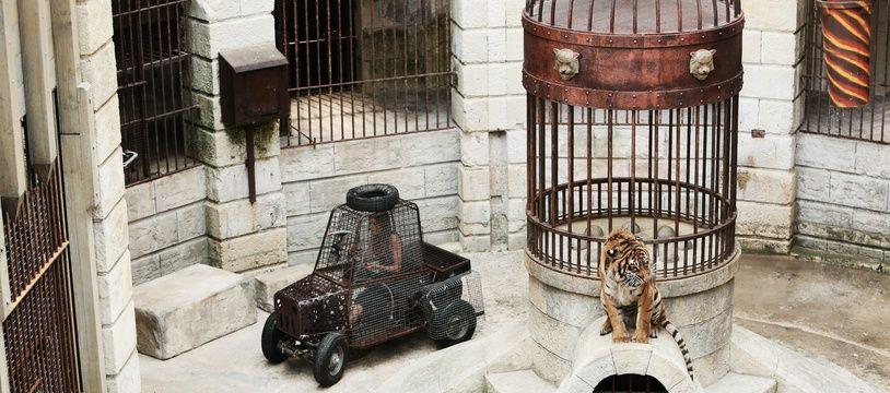 L'épreuve du safari de « Fort Boyard »