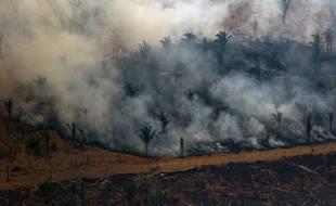 Le groupe de luxe français LVMH a annoncé un don de 10 millions d'euros pour soutenir la lutte contre les incendies en Amazonie, soit plus de la moitié de la somme déjà promise par les membres du G7.