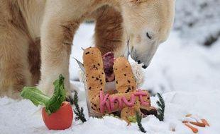 L'ours Knut célèbre son 4e anniversaire au zoo de Berlin, Allemagne, le 5 décembre 2010.