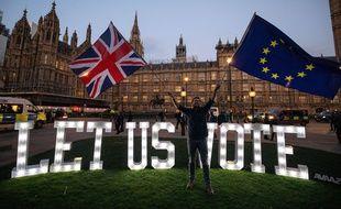 Un militant anti-Brexit manifeste devant le Parlement britannique, le 27 mars 2019.