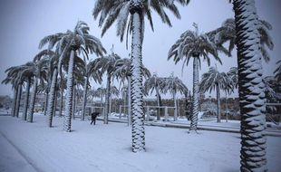 Une des photos qui a circulé ce week-end sur les réseaux sociaux à propos de fausses chutes de neige en Arabie saoudite.