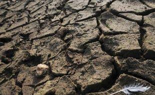 La France, déjà marquée en 2011 par un printemps historiquement sec, accuse de nouveau un déficit pluviométrique en ce début d'année, notamment dans l'ouest et le sud-ouest, et montre des signes de sécheresse en Languedoc-Roussillon, a-t-on appris mardi auprès de Météo France.