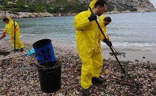 Des agents du conseil de territoire ont procédé au nettoyage de la calanque de Sormiou à Marseille