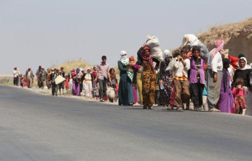 Toulouse: Persécutées par Daesh en Irak, 28 femmes yazidies accueillies à Blagnac