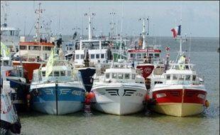 """La France demande le """"rétablissement d'un quota limité dès le deuxième semestre 2007 pendant une période de trois mois"""" pour la pêche à l'anchois dans le Golfe de Gascogne, a annoncé le ministre de la Pêche Michel Barnier"""
