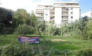 Au 1 rue Léo Imbert à Nice vit une tribu de hérissons.