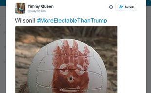 Capture d'écran d'un tweet proposant Wilson, le ballon de Tom Hanks dans le film Seul Au Monde, comme alternative à Trump.
