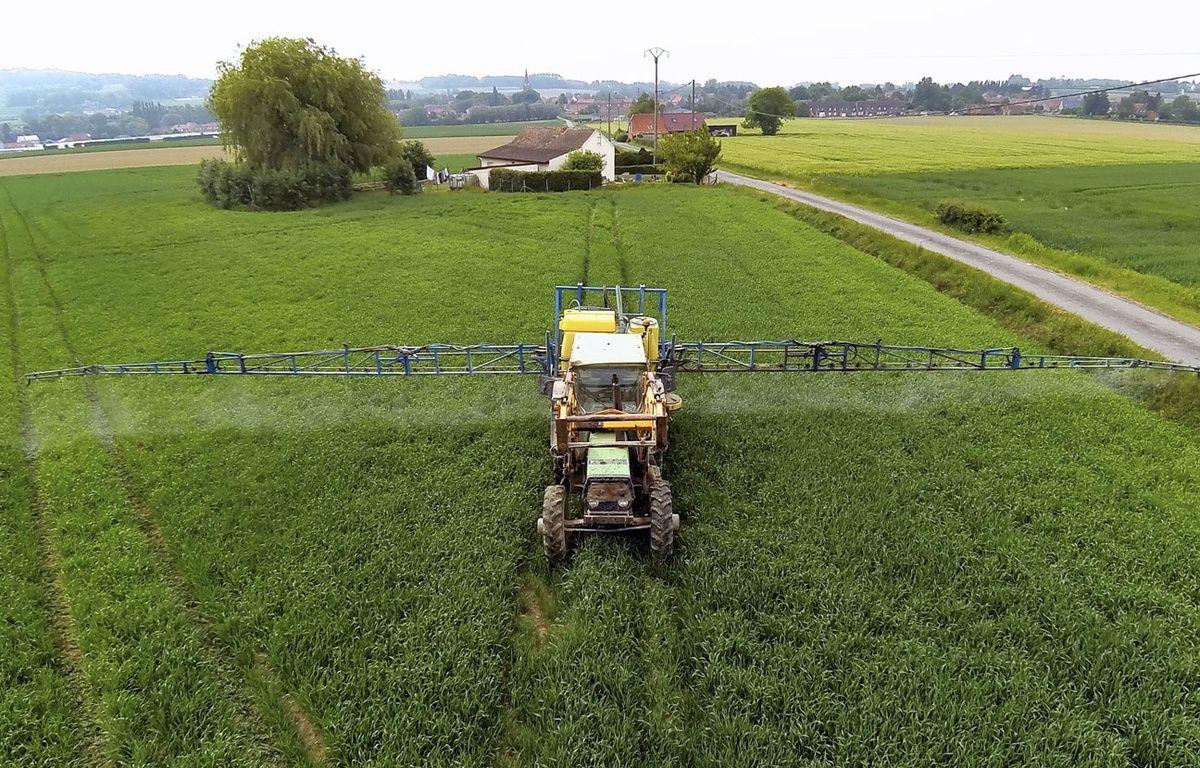 Illustration: un agriculteur emploie des pesticides dans son champ en France. – PHILIPPE HUGUEN / AFP