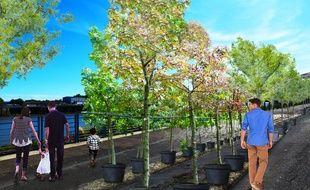Image de synthèse du projet «Quai des plantes» sur le quai de la Fosse.