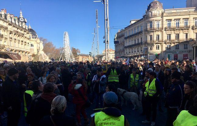 La marche des mutilés a rassemblé plusieurs centaines de personnes dimanche à Montpellier