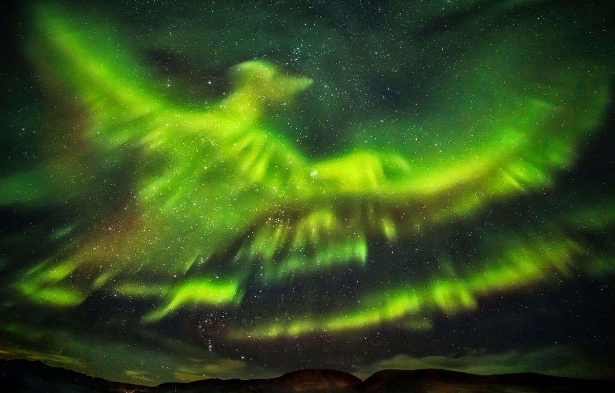 Le photographe Hallgrimur P. Helgason a immortalisé une aurore boréale en forme de Phoenix dans le ciel de Kaldársel, en Islande. – CATERS NEWS AGENCY/SIPA