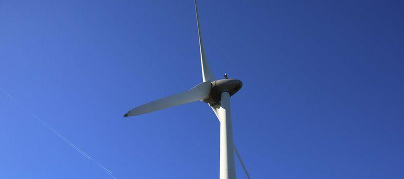 Un champ d'éoliennes flottantes a commencé à produire de l'électricité au large de l'Ecosse, une première mondiale.  (Photo illustration)