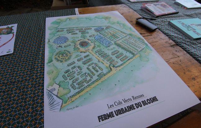 Le plan du futur site de maraîchage du Blosne, situé derrière le Triangle.