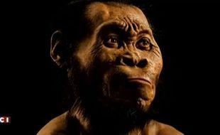 Voici à quoi ressemblait l'Homo naledi, l'ancienne espèce humaine jusqu'alors inconnue, mise au jour dans une grotte d'Afrique du Sud.