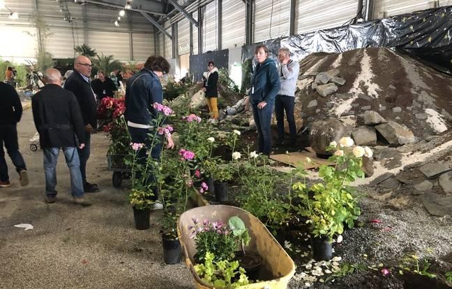 Pour évacuer les végétaux, les Floralies organisaient une braderie ce lundi