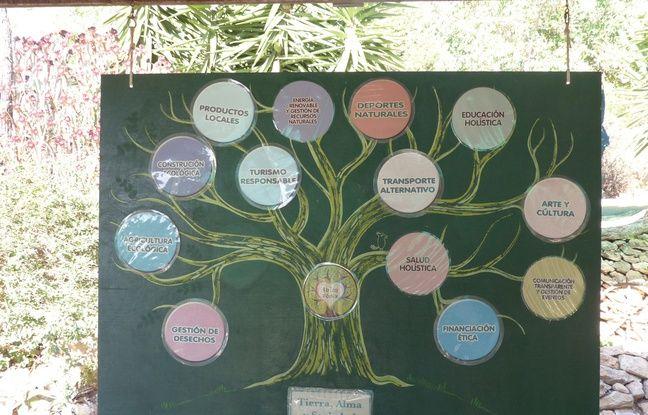 Les différentes missions de Chris Dew à Casita Verde