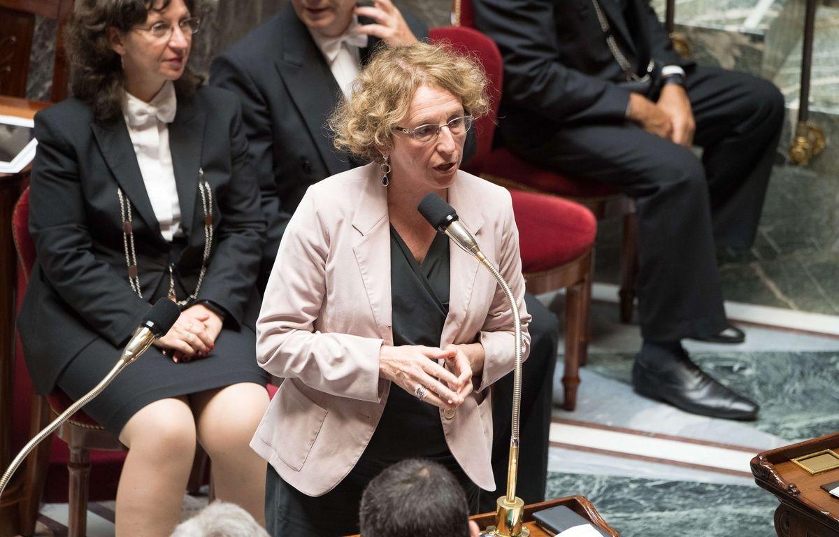 La ministre du Travail Muriel Pénicaud à l'Assemblée nationale le 12 juillet 2017. –  VILLARD/SIPA