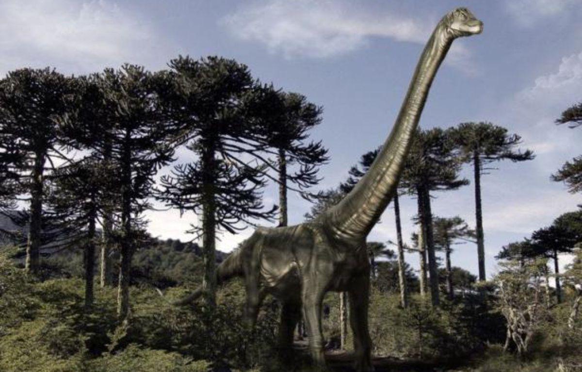 La disparition subite des dinosaures, il y a 65 millions d'années, a donné lieu à toutes sortes de spéculations. Une équipe scientifique suisso-britannique voit dans la stratégie reproductrice de ces animaux fascinants qui pondaient des oeufs, un nouvel élément d'explication. – Carlos Anzures afp.com