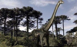 La disparition subite des dinosaures, il y a 65 millions d'années, a donné lieu à toutes sortes de spéculations. Une équipe scientifique suisso-britannique voit dans la stratégie reproductrice de ces animaux fascinants qui pondaient des oeufs, un nouvel élément d'explication.
