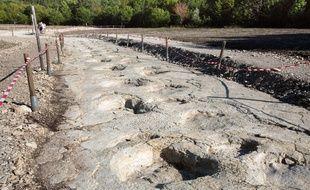 La plus grande succession de pas au monde d'un dinosaure a été découverte en 2009 à La Plagne (Ain).