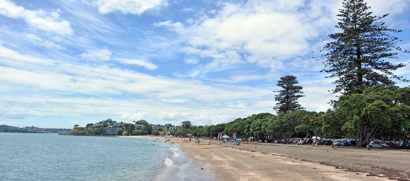 Une plage à Auckland (illustration).