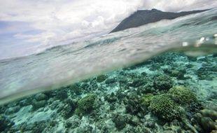 L'Agence internationale de l'énergie atomique (AIEA) a annoncé lundi l'ouverture cet l'été en principauté de Monaco, d'un nouveau centre pour répondre aux problèmes engendrés par l'acidification des océans.