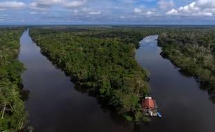 La forêt amazonienne s'étend sur 5 millions de km².