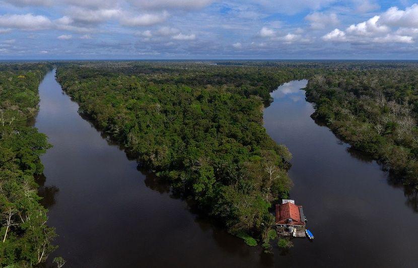 Amazonie : Une mère et ses trois enfants retrouvés après 34 jours à errer dans la jungle