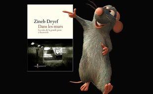 vous avez peur des rats voici le livre qu il vous faut. Black Bedroom Furniture Sets. Home Design Ideas