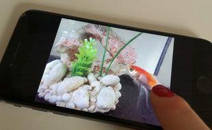 La société hap2u a créé une technologie destinée à terme, àoffrir la sensation du toucher ce que l'on voit sur écran. Illustration.