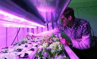 Fabien Persico a créé Urbanfarm, une société de fermes urbaines qui créé des potagers dans des containers.